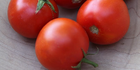 LIVE STREAM: Fall Tomatoes with Sarah Smith Tickets