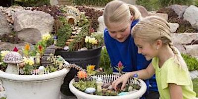 Fairy Gardens in Clay