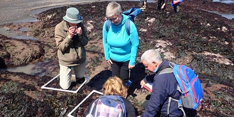 Shoresearch Training Day at Wembury Beach tickets