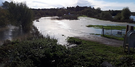 Early morning bird-spotting walk around Willows Farm, Tyttenhanger tickets