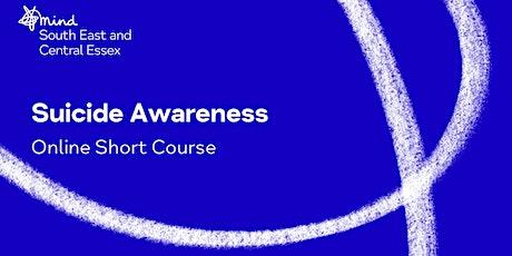 Suicide Awareness Course Online - Evening tickets