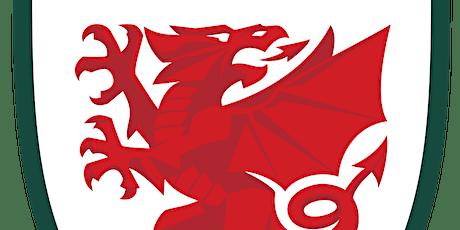 Wales v Belgium tickets