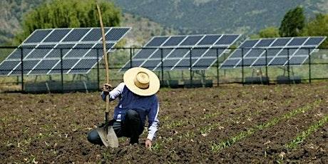 Impacto de la energía fotovoltaica en el entorno rural entradas