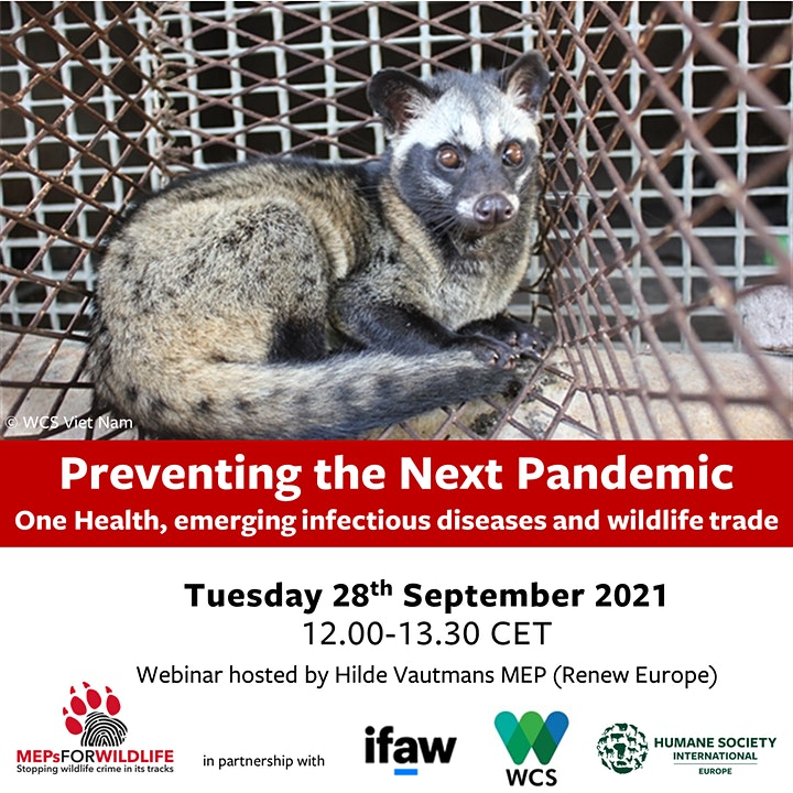 Preventing the Next Pandemic image