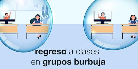 Webinar de Grupos burbujas para escuelas Seguras en Nueva Normalidad entradas