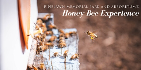 3rd Annual Honey Bee Experience tickets