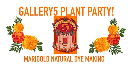 Gallery5 Plant Party! Marigold Natural Dye making with snacks and drinks! tickets