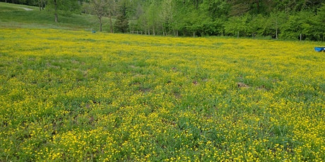 Pasture and Hayfield Weed Control tickets