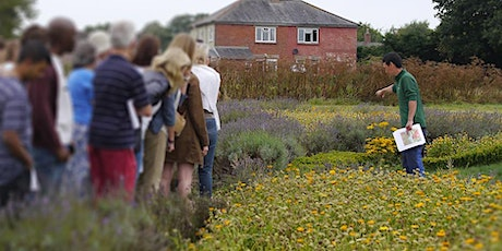 Shumei Natural Agriculture hands-on workshop (Part 3) tickets