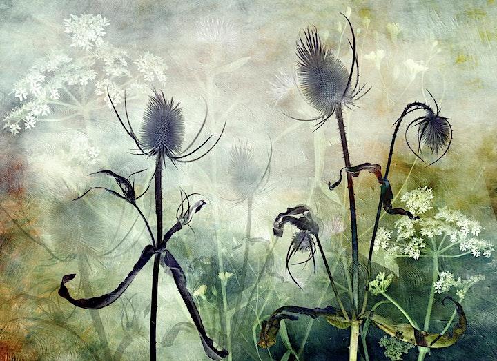 Glenys Garnett talk GET CREATIVE image