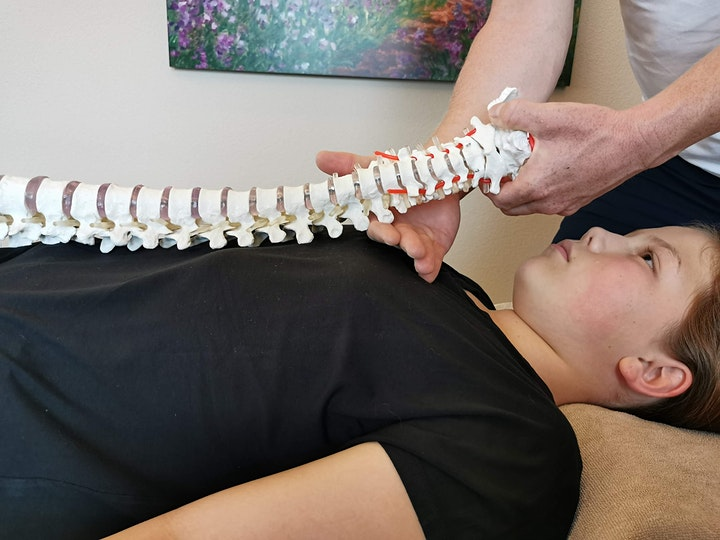 Extra: Manualtherapie für Nicht-PhysiotherapeutInn image