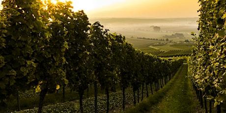 Wine Education Night: Alsace tickets