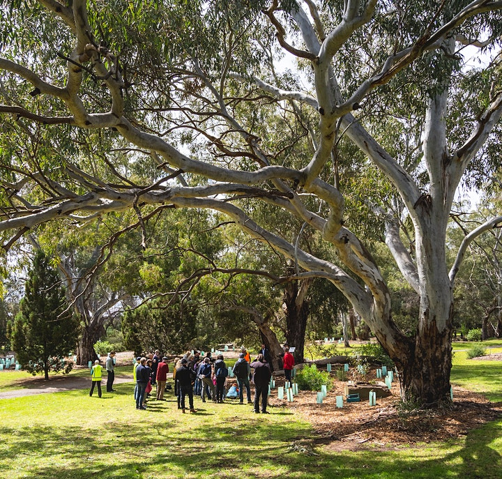 A Day at The Gums image