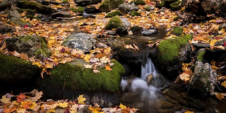 Hunt's Photo Walk: A Day at Enders Falls tickets