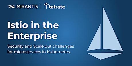 Istio in the Enterprise (hybrid cloud, Kubernetes, Docker, container) boletos