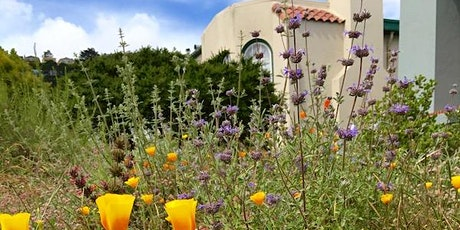 Drought Tolerant Gardening with San Francisco Native Plants tickets
