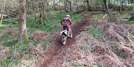 Somerset TRF - Exmoor Forest Ride Day - Sunday 10th October tickets