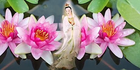 Encuentro de Sanación con la Energía de Magnified Healing® entradas