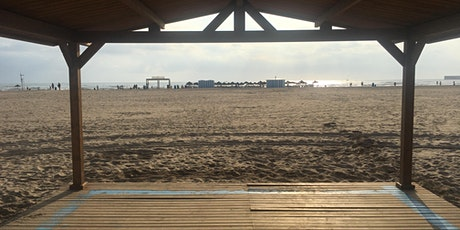 Calistenia con anillas en la playa/Calisthenics with ring on the beach entradas