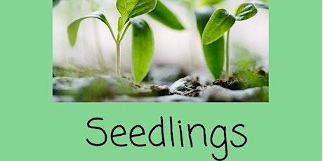 Seedlings tickets
