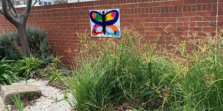 Gardening for Nature in Your School: AAEE SA Professional Learning Day tickets