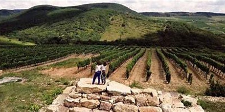 Small Producer Live Online Winemakers' Series: Hungary's Zsirai at RGE RD tickets