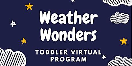 Wallops Visitor Center Toddler Virtual Program: Weather Wonders tickets
