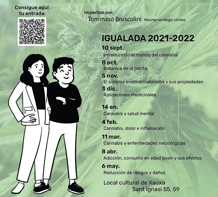 Imagen de Ciclo formativo Cannabis Con-Ciencia