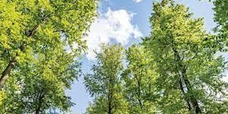 Tree Planting tickets