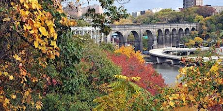 Fall Foliage Walk in Highbridge Park tickets