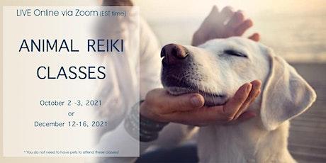 Animal Reiki -Online - Levels 1 and 2 billets