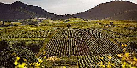 Fine German Wine Tasting: Mosel v Rhine tickets