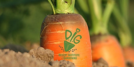 DIG ONLINE: Fall Vegetable Gardening - Bountiful Harvests tickets