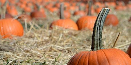 Pumpkin Patch at the Farm tickets
