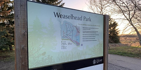 Guided Bird Walk @ Weaselhead Natural Area tickets