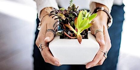 Indoor Plants for Beginners tickets