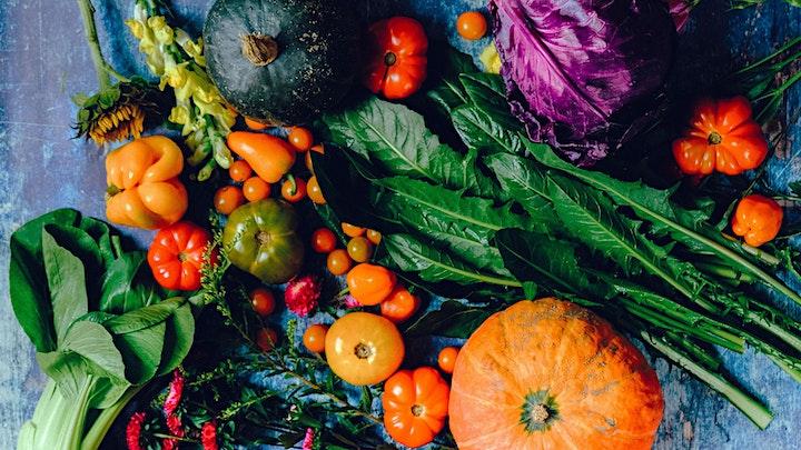 Fall Vegetable Gardening image