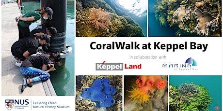 (Mandarin 中文) CoralWalk at Keppel Bay tickets