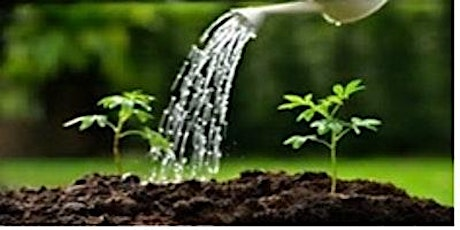 Watering the Garden 2021/22 - Mental Health within Spiritual Direction tickets