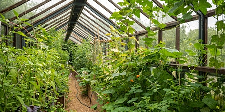 Growing to Grow: Seasonal gardening course for beginners tickets