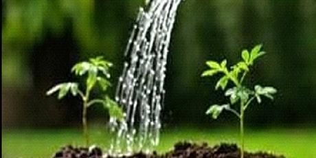 Watering the Garden 2021/22 - Creative use of Images in Spiritual Direction tickets