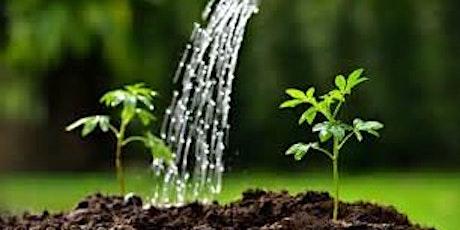 Watering the Garden 2021/22 - Quiet Day: Preparing to celebrate Lent tickets