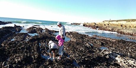 Heartland Charter School- Shell Beach Tidepooling & Nature Exploring tickets