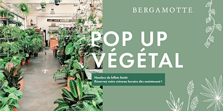 Bergamotte Pop-up Végétal // Genève billets