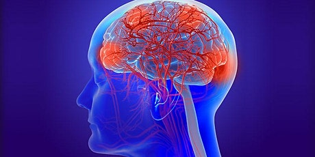 Vascular Contributions to Cognitive Impairment and Dementia tickets