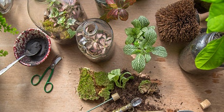 Terrarium Workshop at SPARK:York for Drawesome tickets