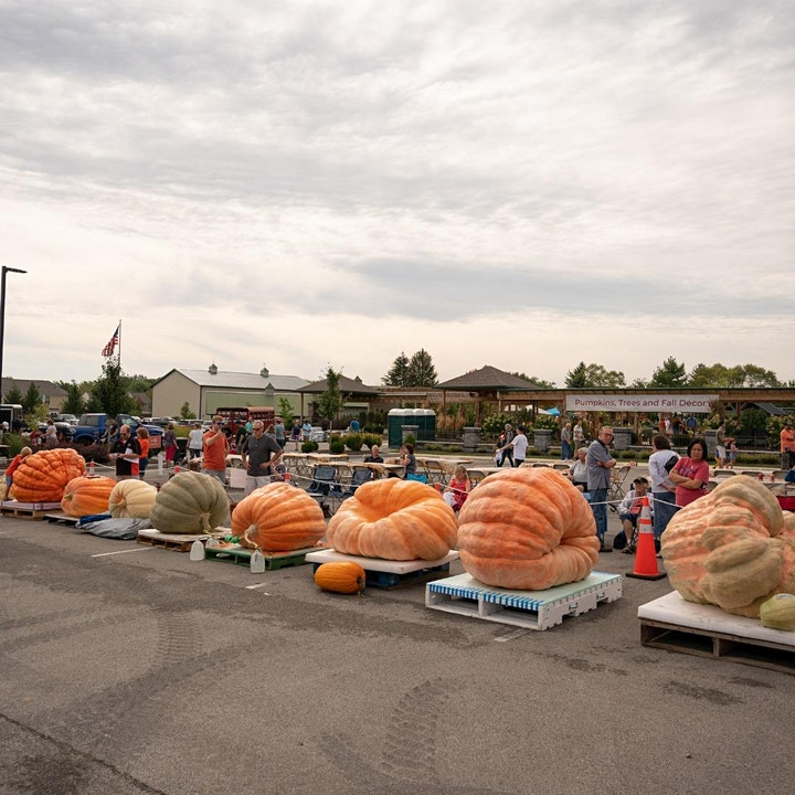 The Great Pumpkin Fest 2021 at Wasson Nursery image