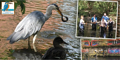 Brookmill Park River Clean Up tickets