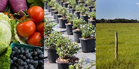 Pesticide Applicator Exam Prep: Private Applicator-Agriculture, Oct. 13 tickets