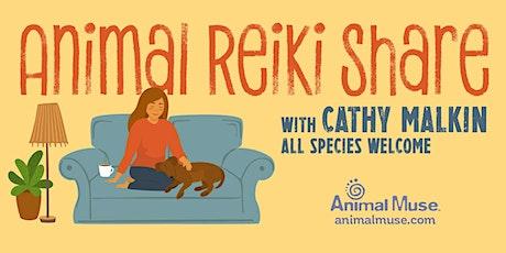 Animal Reiki Share -- November 3, 2021 billets